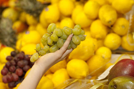 Fruit showcase in the supermarket photo