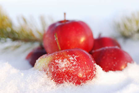 helthcare: Group of red apples on snow Stock Photo