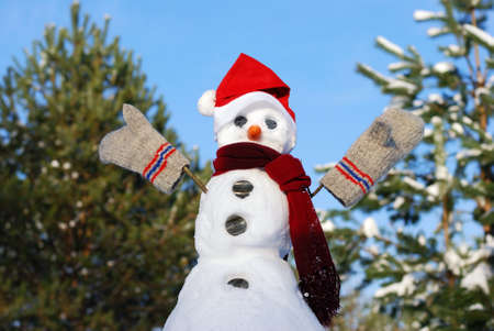 Winter scene with  snowman on  blue sky background Stock Photo - 8340071