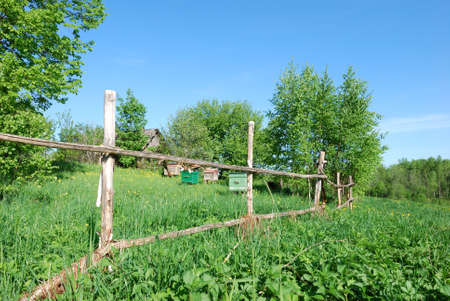 Landscape with beehives, old house and wooden fence, summertime photo