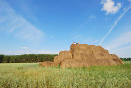 Woman on hay bale in summer field enjoying a warm windy day Stock Photo - 10606445