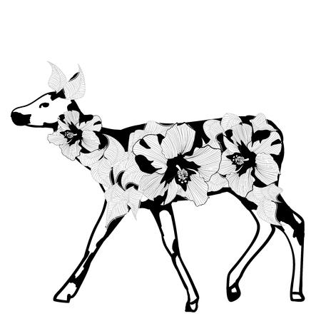 doe: Fantasy young doe on a white background Illustration