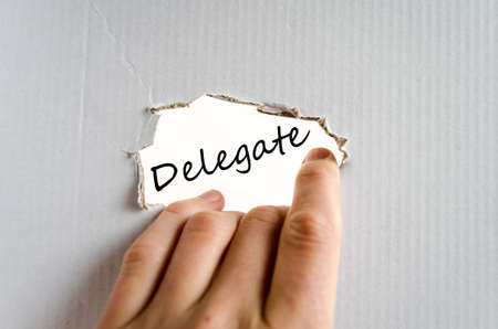 supervise: Delegate text concept isolated over white background Stock Photo