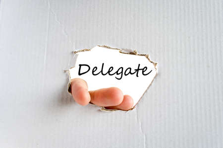 delegate: Delegate text concept isolated over white background Stock Photo
