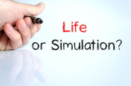 Life or simulation text concept isolated over white background