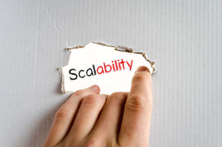 adaptable: Scalability text concept isolated over white background