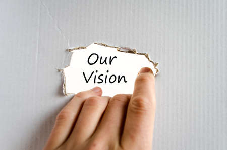 fulfill: Our vision text concept isolated over white background