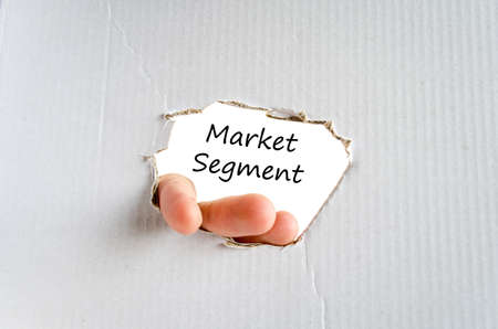 segmentar: Concepto del texto del segmento de mercado aislado sobre fondo blanco