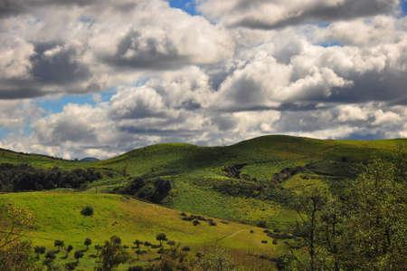 녹색 캐년 언덕 스톡 콘텐츠