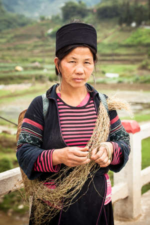 Sapa, Lao Cai, Vietnam -  5 May 2014: The portrait of tribal Hmong woman in national clothes  standing on the road near rice fields with hay in the hands on 05 May 2014 in Sapa, Northern Vietnam.