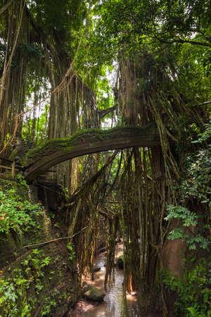 ubud: Dragon Bridge in Sacred Monkey Forest Sanctuary, Ubud, Bali, Indonesia