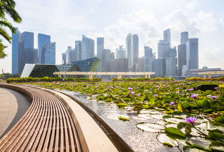cbd: Singapore, Singapore - February 17, 2016: Daytime view of the Singapore CBD skyskrapers with beautiful lilly pond on the foreground. Editorial