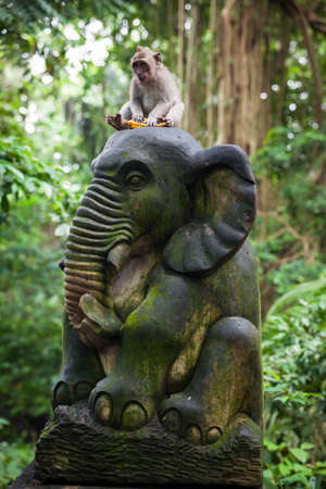 Balinese long-tailed monkey sitting on the statue with banana in Monkey Forest Sanctuary, Ubud, Bali, Indonesia Stock Photo - 56679316