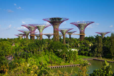 groove: SINGAPORE, SINGAPORE - FEBRUARY 17: Daytime view of the Supertree groove at Gardens By The Bay on 17, 2016 in Singapore. Editorial