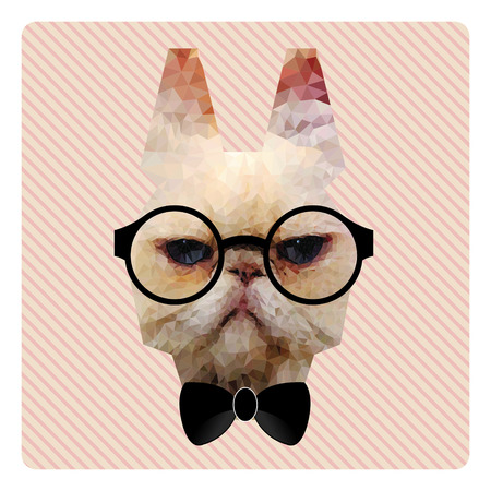 pink stripes: Polygonal Fashion Portrait of Hipster Cat on Pink Stripes Background and Bow Tie