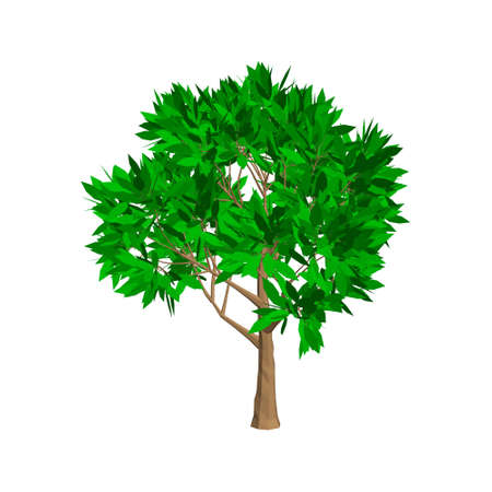 Apple tree. Isolated on white background. 3d Vector illustration.