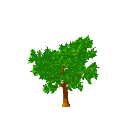 Abstract tree. Isolated on white background. 3D rendering illustration.Cartoon style. Stock Photo