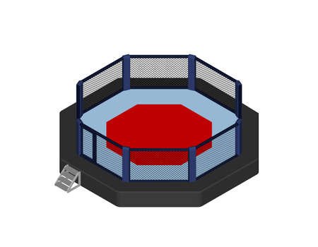 Octagon fight cage. Isolated on white background. 3d Vector illustration. Isometric projection.