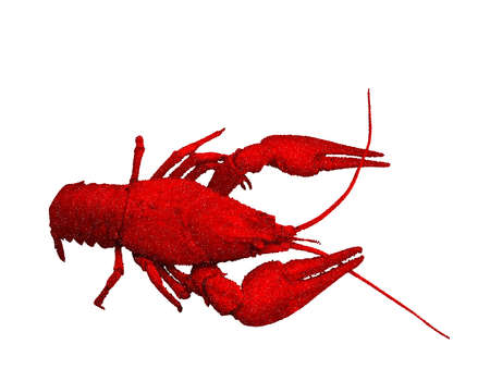 Red  crawfish. Isolated on  white background. Vector illustration. Pointillism style.