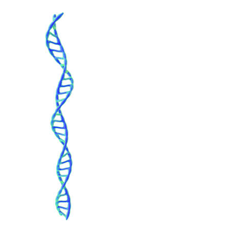 DNA spiral. Isolated on white background. 3D rendering illustration. Standard-Bild