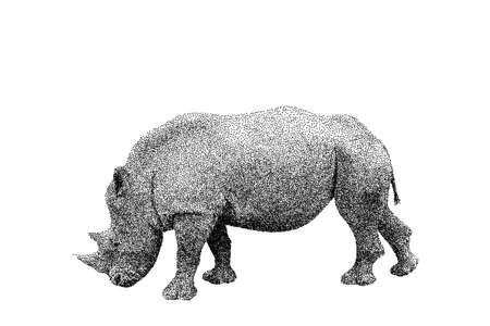 Nashorn. Isoliert auf weißem Hintergrund. Vektor-Illustration. Skizzenstil.