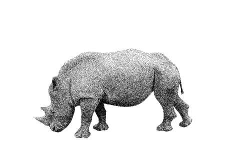 Rhinoceros. Isolated on white background. Vector illustration. Sketch style.