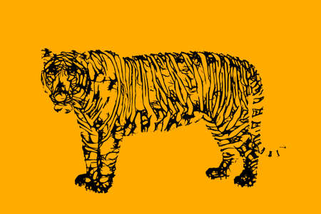 Abstract Tiger. Vector illustration. Sketch style.  Illustration