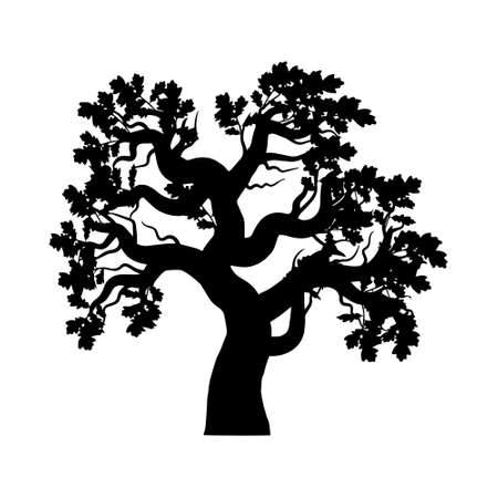 oak silhouette isolated on a white background. Vector illustration.