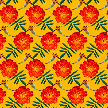 Seamless pattern with orange Tagetes patula (French marigold) flowers and green leaves on yellow background. Endless colorful floral texture. Raster illustration.