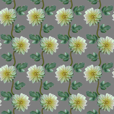 Seamless pattern with white Dahlia flowers and green leaves on grey background. Endless floral texture. Raster illustration.