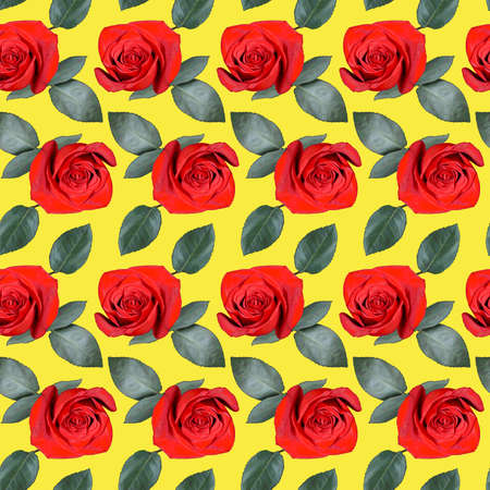Seamless pattern with red rose flowers and green leaves on yellow background. Endless colorful floral texture. Raster illustration. Stock fotó