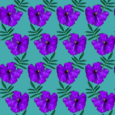 Seamless pattern with purple Petunia flowers and green leaves on green background. Endless colorful floral texture. Raster illustration. Stock fotó