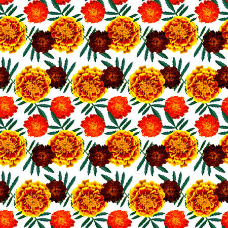 Seamless pattern with brown, orange, yellow Tagetes patula (French marigold) flowers and green leaves on white background. Endless colorful floral texture. Raster illustration.