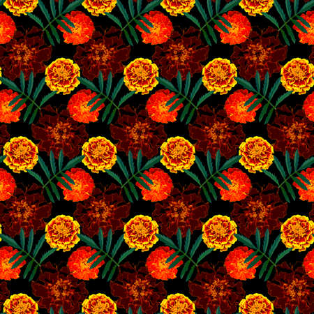 Seamless pattern with brown, orange, yellow Tagetes patula (French marigold) flowers and green leaves on black background. Endless colorful floral texture. Raster illustration.