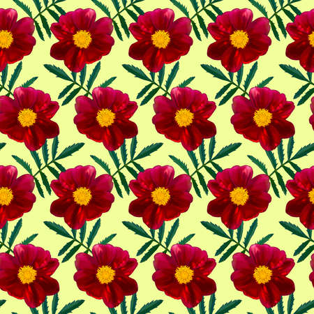 Seamless pattern with red Dahlia flowers and green leaves on yellow background. Endless floral texture. Raster colorful illustration.