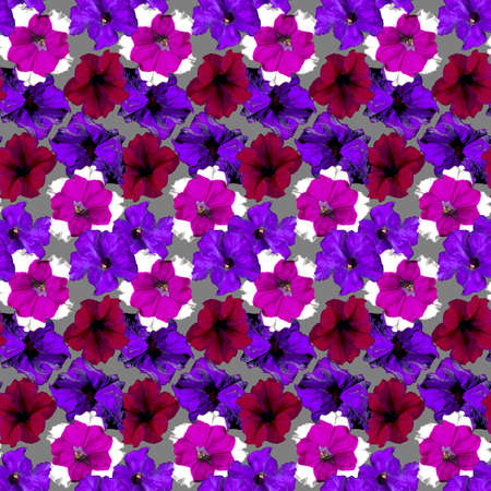 Seamless pattern with red, purple, violet Petunia flowers on grey background. Endless colorful floral texture. Raster illustration. Stock fotó