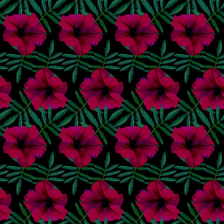 Seamless pattern with red Petunia flowers and green leaves on black background. Endless colorful floral texture. Raster illustration. Stock fotó