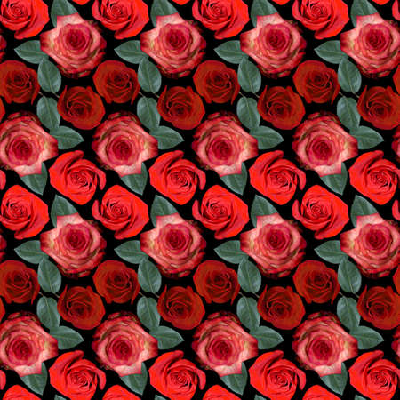 Seamless pattern with red, pink rose flowers and green leaves on black background. Endless colorful floral texture. Raster illustration. Stock fotó