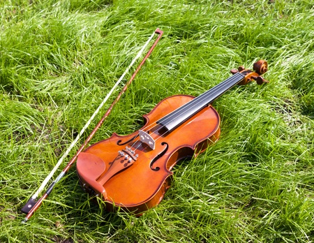Violin on a green grass. photo
