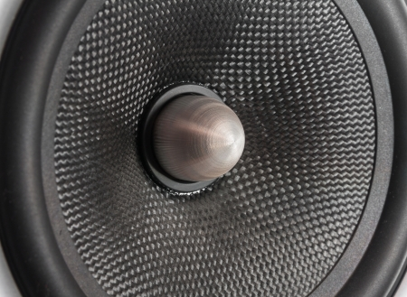 Speaker woofer.  photo
