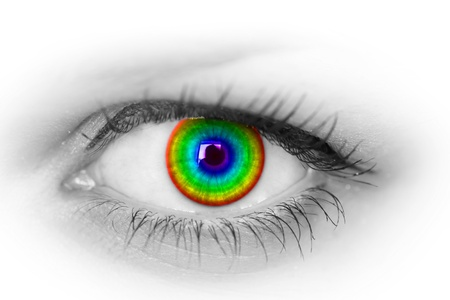 Colorful eye on white  photo