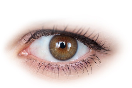 Human eye with reflection on white background  Macro shot  Banque d'images