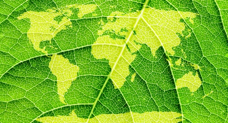 bionics: World map, continents in green leaf background   Stock Photo