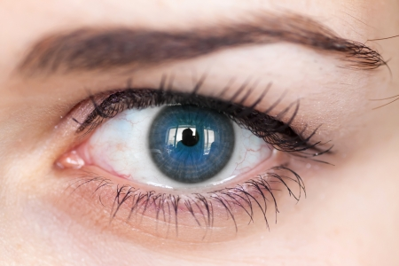 Human blue eye with reflection  Macro shot with shallow depth of field   Stock Photo