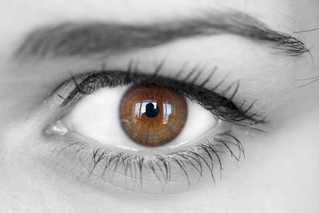 Close up of a brown eyes with reflection  photo