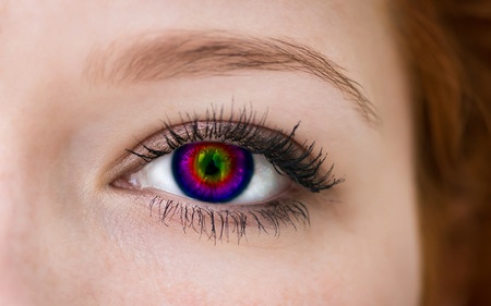 Multicolored eye, macro shot   photo