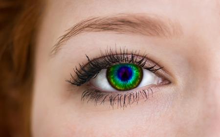 Multicolored eye, macro shot  photo