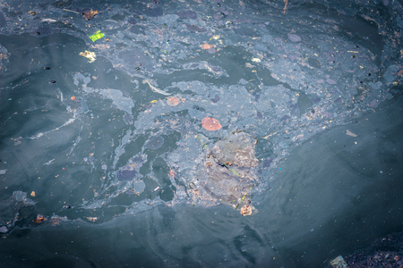 Oil and garbage pollution in the water. Selective focus. photo
