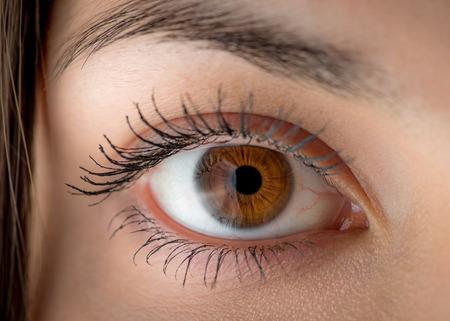 Menschlichen Auges mit Reflektion. Makroaufnahme mit geringer Tiefenschärfe. Standard-Bild - 36223747