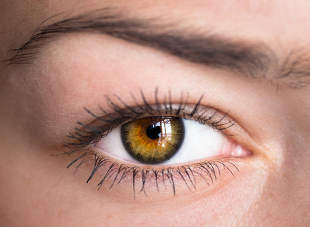 closeup: Green human eye with clock - concept photo. Stock Photo